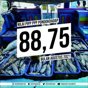 0309 PIPP