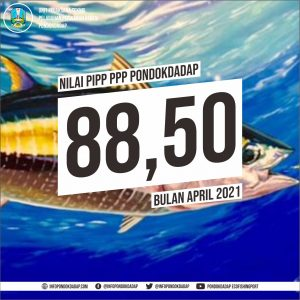 0505 PIPP
