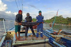 Inspeksi Pengendalian Mutu PPP Pondokdadap Bulan Maret: Ikan Tuna yang Didaratkan Berada dalam Kondisi yang Baik